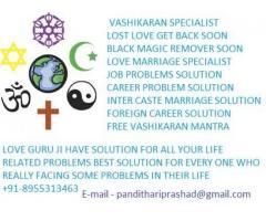 8955313463 girl vashikaran specialist in chennai